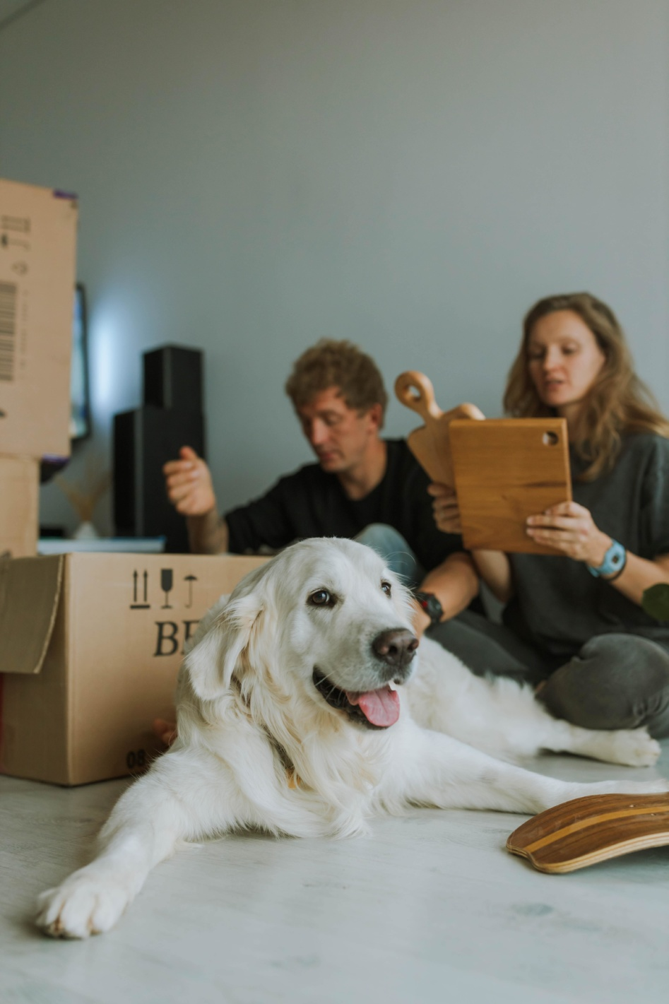 Protect your peace of mind when moving home 1